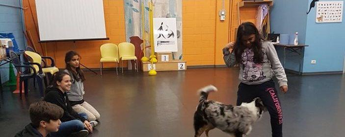 pet education